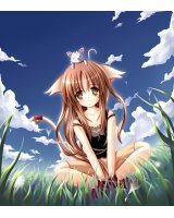BUY NEW a school life of heaven - 45649 Premium Anime Print Poster