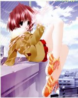 BUY NEW aquarian age - 144758 Premium Anime Print Poster