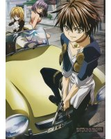 BUY NEW black cat - 112504 Premium Anime Print Poster