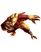 BUY NEW bloody roar - 88152 Premium Anime Print Poster