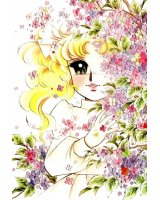 BUY NEW candy candy - 23311 Premium Anime Print Poster
