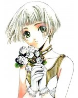 BUY NEW clover - 102514 Premium Anime Print Poster