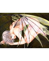 BUY NEW clover - 107560 Premium Anime Print Poster
