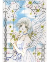 BUY NEW clover - 120377 Premium Anime Print Poster