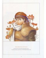 BUY NEW record of lodoss war - 10685 Premium Anime Print Poster