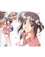 BUY NEW sentimental graffiti - 2445 Premium Anime Print Poster