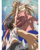 BUY NEW seto no hanayome - 136287 Premium Anime Print Poster