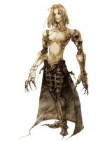 BUY NEW vagrant story - 37349 Premium Anime Print Poster