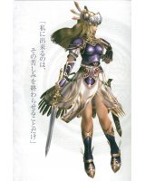 BUY NEW valkyrie profile - 183170 Premium Anime Print Poster