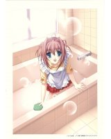 BUY NEW da capo - 134949 Premium Anime Print Poster