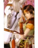 dynasty warriors - 23852