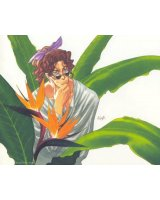 BUY NEW escaflowne - 155512 Premium Anime Print Poster