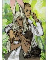 BUY NEW final fantasy xii - 101833 Premium Anime Print Poster