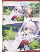 BUY NEW fortune arterial - 168495 Premium Anime Print Poster