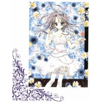 BUY NEW full moon wo sagashite - 145263 Premium Anime Print Poster