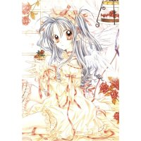 BUY NEW full moon wo sagashite - 145265 Premium Anime Print Poster
