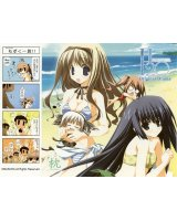 BUY NEW h2o footprints in the sand - 152624 Premium Anime Print Poster