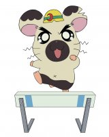 BUY NEW hamtaro - 35082 Premium Anime Print Poster