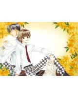 BUY NEW hanazakari no kimitachi e - 163547 Premium Anime Print Poster