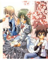 BUY NEW hayate the combat butler - 121633 Premium Anime Print Poster