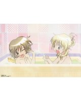 BUY NEW hidamari sketch - 117165 Premium Anime Print Poster