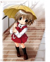 BUY NEW hidamari sketch - 119194 Premium Anime Print Poster