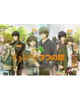 BUY NEW junjo romantica - 182225 Premium Anime Print Poster