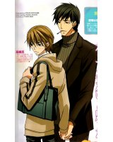 BUY NEW junjo romantica - 195532 Premium Anime Print Poster