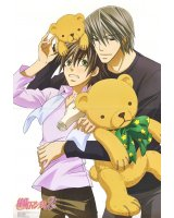 BUY NEW junjo romantica - 195952 Premium Anime Print Poster