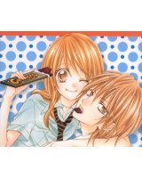 BUY NEW love berrish - 167023 Premium Anime Print Poster