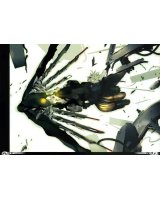 BUY NEW miwa shirow - 161361 Premium Anime Print Poster