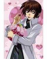 BUY NEW mobile suit gundam seed - 108839 Premium Anime Print Poster