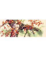 BUY NEW mushishi - 130944 Premium Anime Print Poster