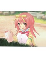 BUY NEW nanatsuiro drops - 133888 Premium Anime Print Poster