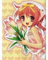 BUY NEW nanatsuiro drops - 146558 Premium Anime Print Poster