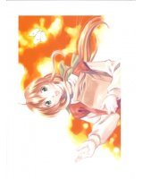 BUY NEW natural - 120107 Premium Anime Print Poster