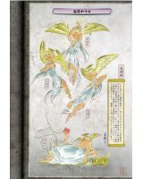 BUY NEW okami - 103374 Premium Anime Print Poster