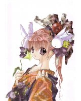 BUY NEW pixy gale - 113150 Premium Anime Print Poster