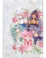 BUY NEW sailor moon - 111445 Premium Anime Print Poster