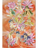 BUY NEW sailor moon - 111452 Premium Anime Print Poster