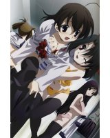 BUY NEW school days - 138909 Premium Anime Print Poster
