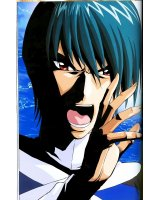 BUY NEW scryed - 160791 Premium Anime Print Poster