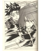 BUY NEW tales of symphonia - 145303 Premium Anime Print Poster