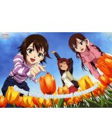 BUY NEW true tears - 168034 Premium Anime Print Poster