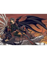 BUY NEW tsubasa reservoir chronicle - 117229 Premium Anime Print Poster