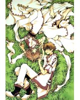 BUY NEW tsubasa reservoir chronicle - 117289 Premium Anime Print Poster