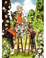 BUY NEW tsubasa reservoir chronicle - 124582 Premium Anime Print Poster