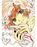 BUY NEW tsubasa reservoir chronicle - 125179 Premium Anime Print Poster