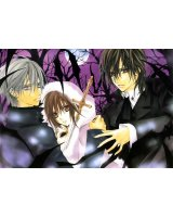BUY NEW vampire knight - 155403 Premium Anime Print Poster