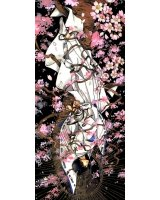 BUY NEW x 1999 - 111205 Premium Anime Print Poster